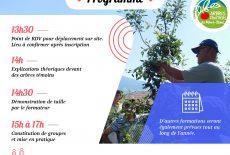 Formation entretien des arbres fruitiers : une nouvelle session
